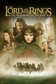 The Lord of the Rings: The Fellowship of the Ring (2001) เดอะลอร์ดออฟเดอะริงส์: อภินิหารแหวนครองพิภพ
