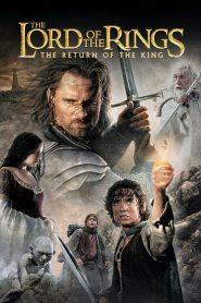 The Lord Of The Rings The Return Of The King Extended Edition (2003) เดอะลอร์ดออฟเดอะริงส์: มหาสงครามชิงพิภพ