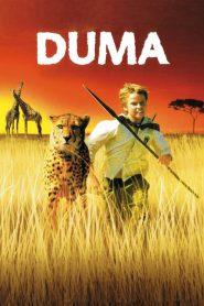Duma (2005) ดูม่า
