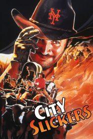 City Slickers (1991) หนีเมืองไปเป็นคาวบอย