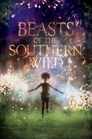 Beasts of the Southern Wild (2012) ฮีโร่น้อยฝ่ามรสุมชีวิตเขื่อนกักน้ำ