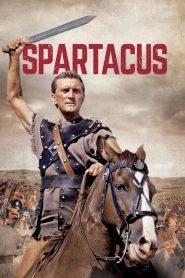 Spartacus (1960) สปาร์ตาคัส