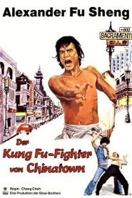 Chinatown Kid (1977) ไอ้ซินตึ้งหน้าหยก