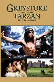 Greystoke The Legend of Tarzan, Lord of the Apes (1984) เกรย์สโตก ทาร์ซาน (Soundtrack)