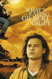 Whats Eating Gilbert Grape (1993) รักแท้เลือกไม่ได้