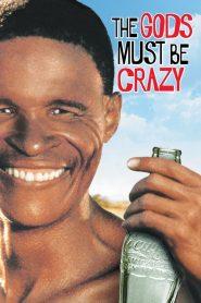 The Gods Must Be Crazy (1980) เทวดาท่าจะบ๊องส์