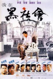 Triads The Inside Story (1989) โหดต้องโทษดวง