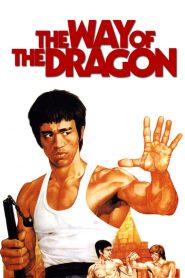 The Way of the Dragon (1972) ไอ้หนุ่มซินตึ๊งบุกกรุงโรม
