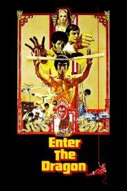 Enter the Dragon (1973) ไอ้หนุ่มซินตึ๊ง มังกรประจัญบาน