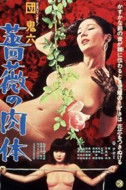 18+ Skin of Roses (1978) หนังผู้ใหญ่ญี่ปุ่นในตำนาน