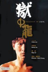 Dragon in Jail (1990) จำไว้เมียข้าเจ็บไม่ได้
