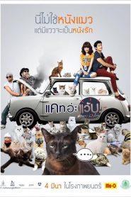 Cat A Wabb (2015) แคท อ่ะ แว้บ แบบว่ารักอ่ะ