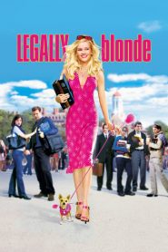 Legally Blonde 1 (2001) สาวบลอนด์หัวใจดี๊ด๊า ภาค 1