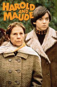 Harold and Maude (1971)