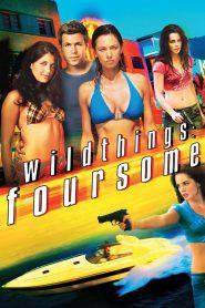 Wild Things 4 (2010) เกมซ่อนกล ภาค 4