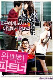 18+ Perfect Partner (2011)