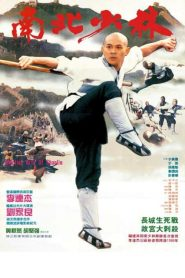 The Shaolin Temple 3 (1986) เสี้ยวลิ้มยี่ ภาค 3