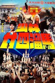 The Shaolin Temple 2 (1982) เสี้ยวลิ้มยี่ ภาค 2