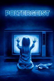 Poltergeist (1982) ผีหลอกวิญญาณหลอน
