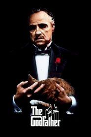 The Godfather 1 (1972) เดอะ ก็อดฟาเธอร์ ภาค 1
