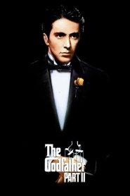 The Godfather 2 (1974) เดอะ ก็อดฟาเธอร์ ภาค 2