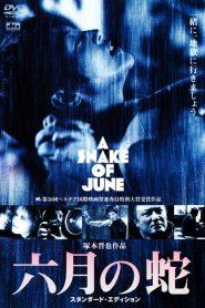 18+ A Snake of June (Rokugatsu no hebi) (2002)