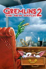 Gremlins 2: The New Batch (1990) ปิศาจแสนซน 1