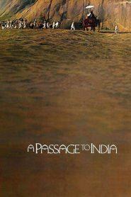 A PASSAGE to INDIA (1984) อินเดีย…สุดฟ้าสัมผัสหัวใจ