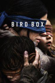 Bird Box (2018) มอง อย่าให้เห็น
