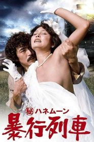 18+ Secret Honeymoon: Rape Train (1977)