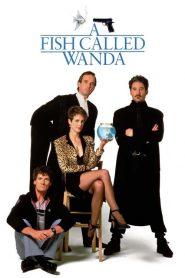 A Fish Called Wanda (1988) รักน้องต้องปล้น