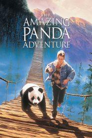 The Amazing Panda Adventure (1995) แพนด้าน้อยผจญภัยสุดขอบฟ้า