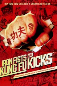 Iron Fists and Kung Fu Kicks (2019) กังฟูสะท้านปฐพี