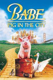 Babe Pig in the City (1998) เบ๊บ หมูน้อยหัวใจเทวดา ภาค 2