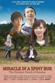 Miracle In Kasama (2018)