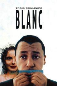 Three Colors White (1994)