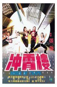 House of Traps (1982) จอมโหดวังมหากล