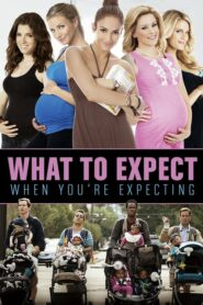 What to Expect When you re Expecting (2012) เธอ เริ่ด เชิด ป่อง