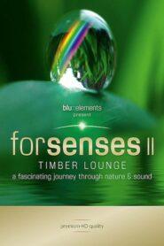 Forsenses II Timber Lounge (2011)