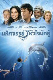 [NETFLIX] Dolphin Tale (2011) มหัศจรรย์โลมาหัวใจนักสู้