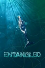 Entangled: The Race to Save Right Whales from Extinction (2020)