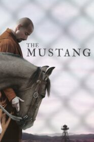 [NETFLIX] The Mustang (2019) ม้าป่าแสนพยศ