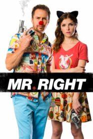 Mr Right (2016) คู่มหาประลัย นักฆ่าเลิฟ เลิฟ