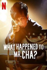 [NETFLIX] What Happened to Mr Cha (2021) ชาอินพโย สุภาพบุรุษสุดขั้ว