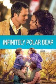 Infinitely Polar Bear (2014)