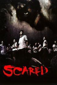 SCARED (2005) รับน้องสยองขวัญ