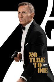 NO TIME TO DIE (2021) เจมส์ บอนด์ 007 ภาค 26 พยัคฆ์ร้ายฝ่าเวลามรณะ