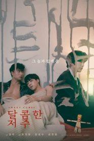 Sweet Curse (2021) คำสาปหวาน